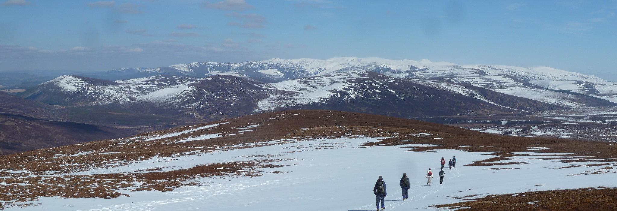 Cairngorm panorama